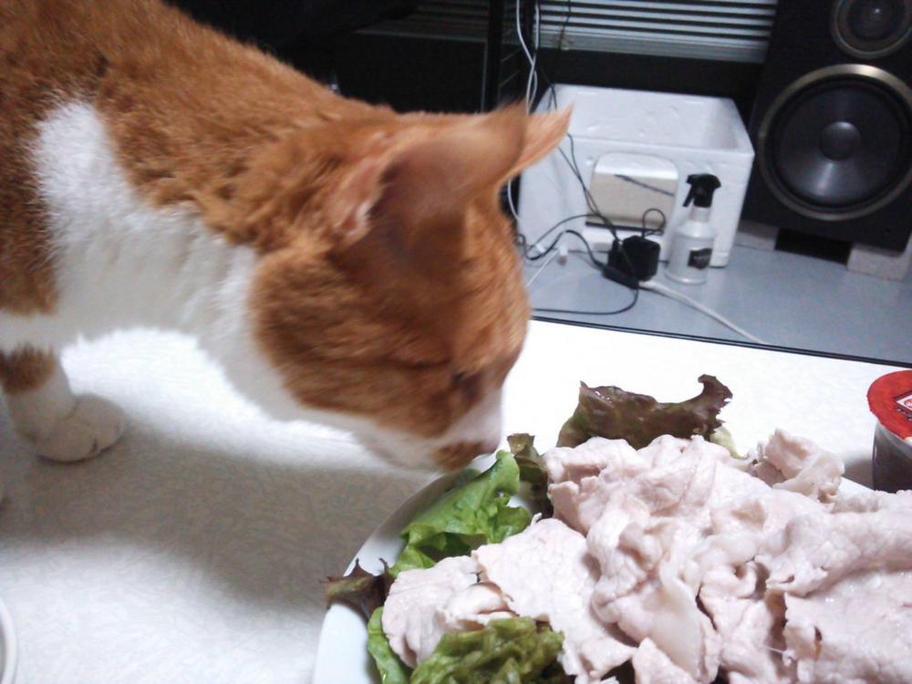 たまらんぜぃ、豚肉にささみサキサキ!!